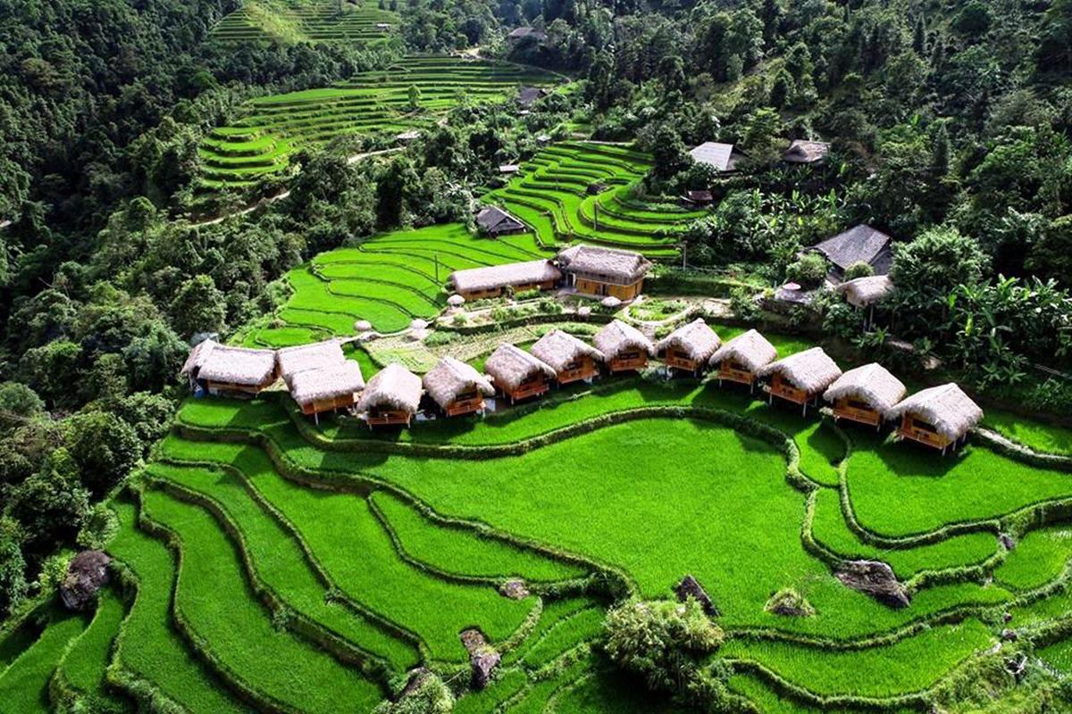 Homestay Hoàng Su Phì Lodge